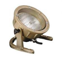 Focus Industries (Fii) SL-11-AB - Brass Underwater Light