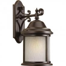 Progress P5876-20WB - One Light Antique Bronze Water Seeded Glass Wall Lantern