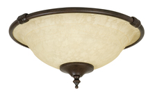 Craftmade LK24CFL-AG - 2 Light Bowl Fan Light Kit in Aged Bronze with Antique Scavo Glass