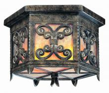 Troy C9900CG - Two Light Charred Gold Outdoor Flush Mount